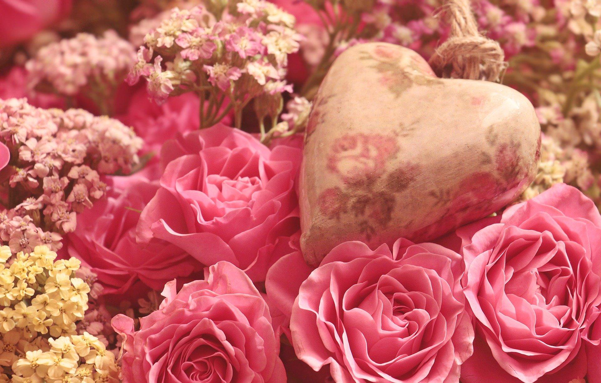 roses-3700007_1920